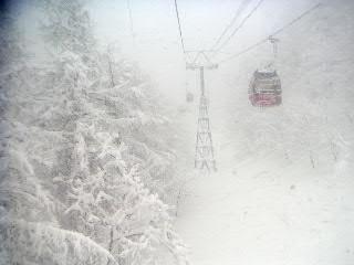 雪は降ってるけど、視界悪いっ
