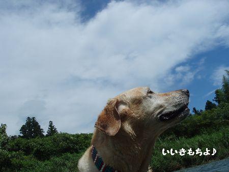 風が気持ちいいです。