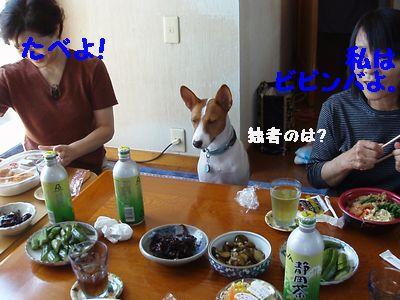 もう食事です。