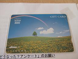 DSCF3176.jpg
