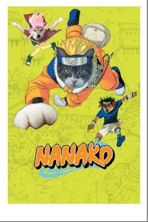 naruto1-nana.jpg