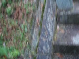 20061017192141.jpg