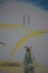 DSC01052.jpg