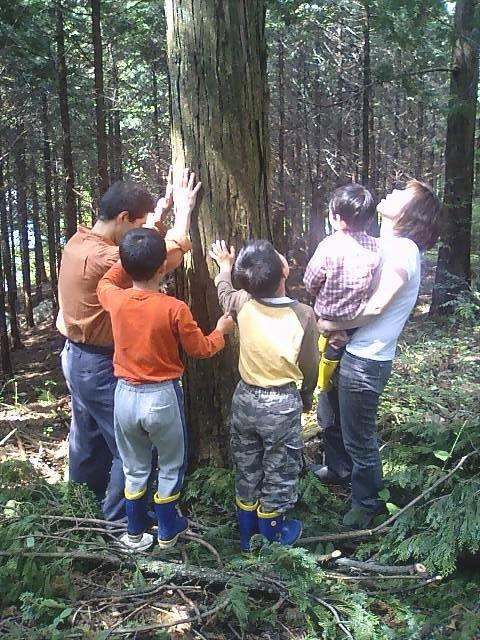檜の大木と対話するSさんご一家