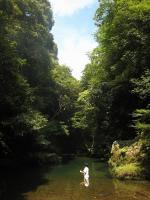japon-涸沢-京都 (457)
