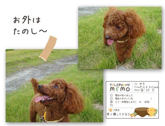 20080821-03.png