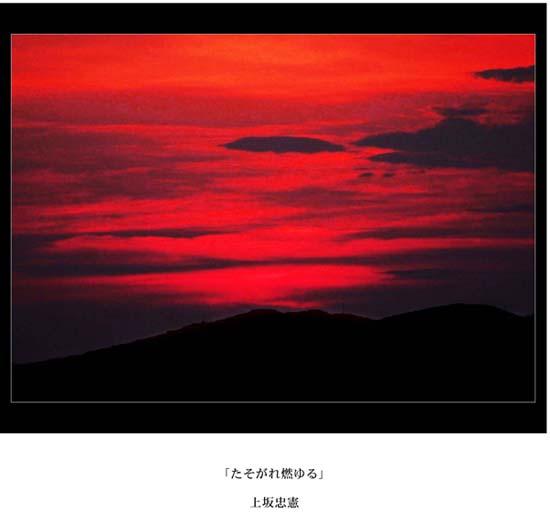 06_20091109172948.jpg