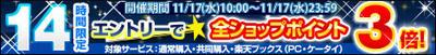 20101117_11