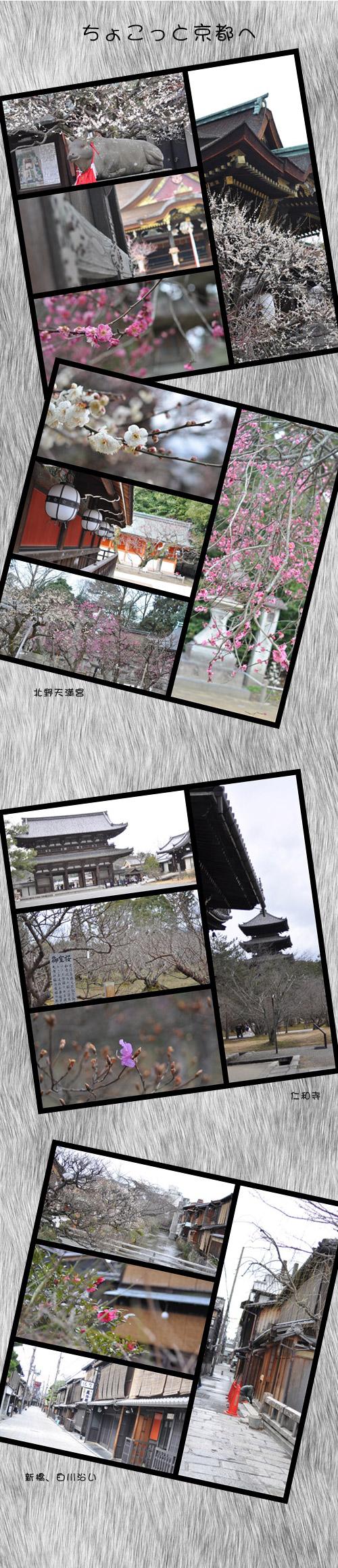 2月20日京都1