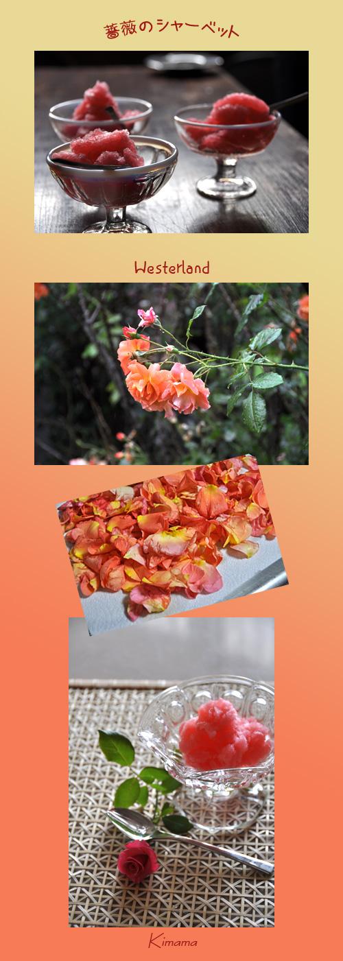 7月14日秘密の花園1