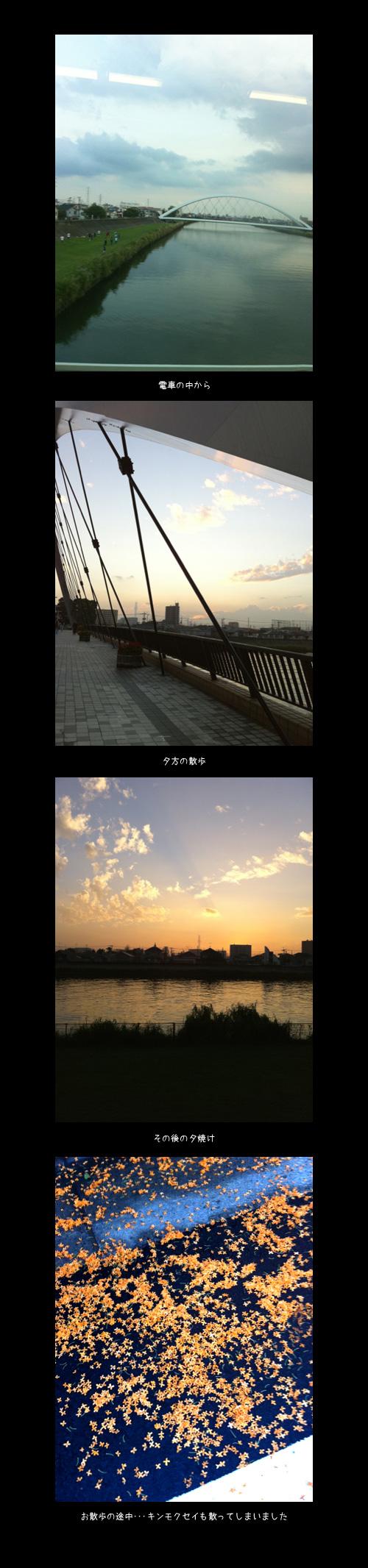 10月13日iphone1