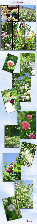 6月10日H邸ガーデン