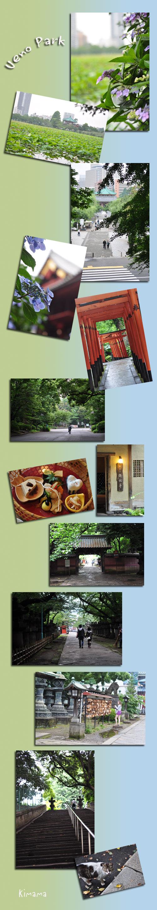 6月13日上野公園