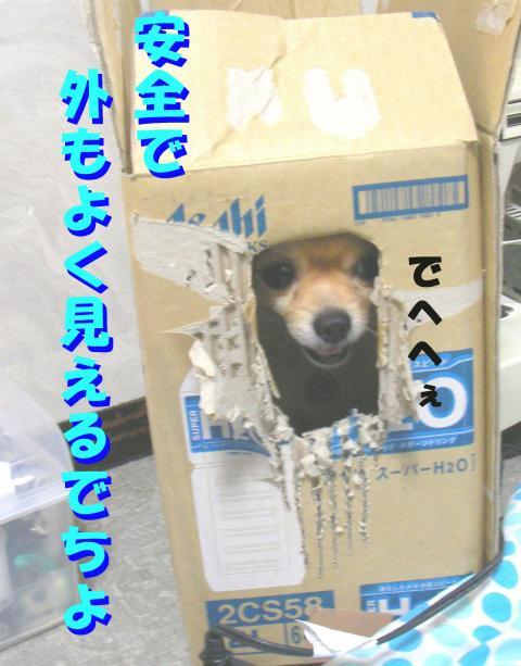 As080816b_convert_20080817225936.jpg
