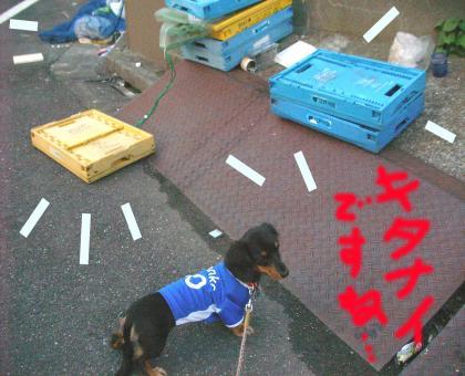 kitanai_convert_20080916203449.jpg
