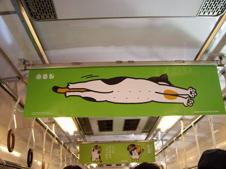 たま電車4