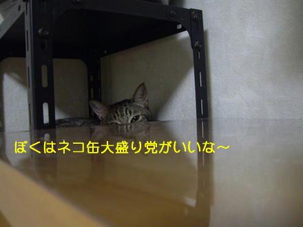 daikunn.jpg