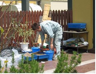 屋上庭園を維持して下さる職員