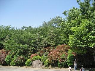 飛鳥山公園1