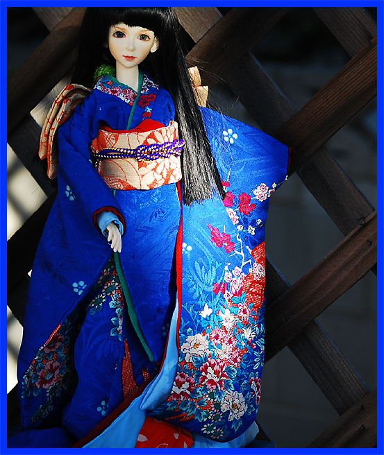 8kiku_kimono.jpg