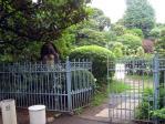 芝野が立っていた庭への入口(鳩山会館)