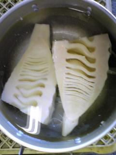 タケノコ茹でました