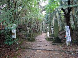 上醍醐への参道