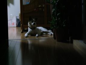 2011年9月8日 004