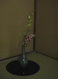 20070331-7