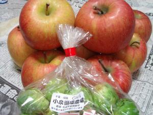 0903151GAIAのりんご