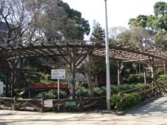 090330須藤公園