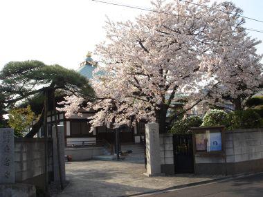 090408香念寺