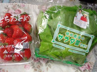 090413とちおとめとサラダ菜、安い