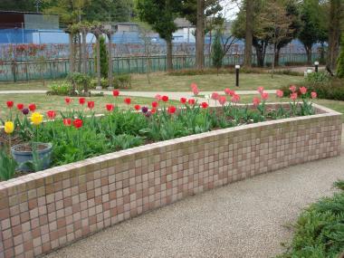 090414病院の庭