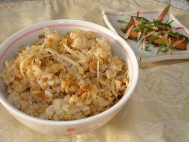 090502生姜ご飯
