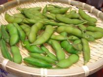 090728ゆでた枝豆