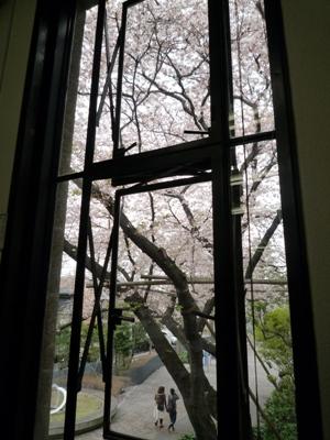 100409_02杉並研究室窓