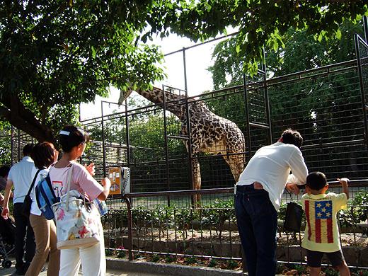 王子動物園_2006092507