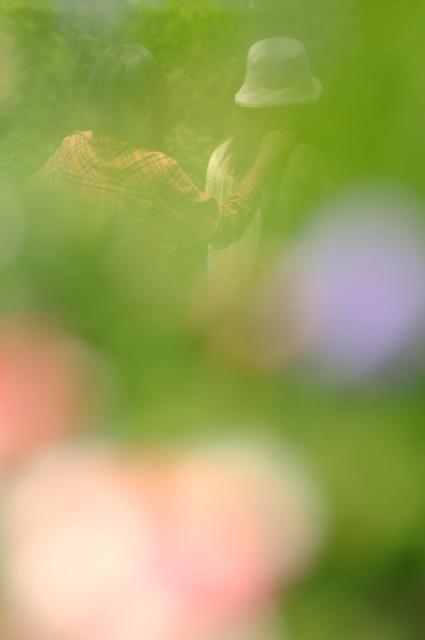 20090504-2.jpg