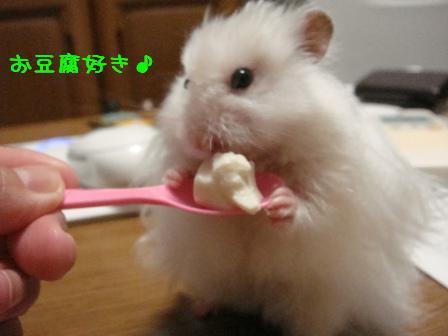 お豆腐好き♪