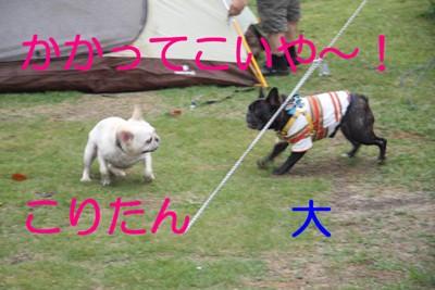 IMG_82081.jpg