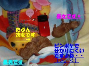 20051221101214.jpg