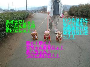 20060116085405.jpg