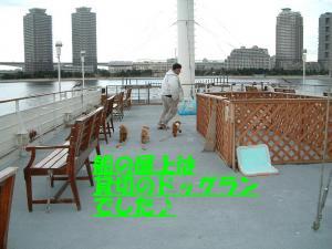 20060118223603.jpg