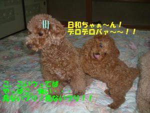 20060308191443.jpg
