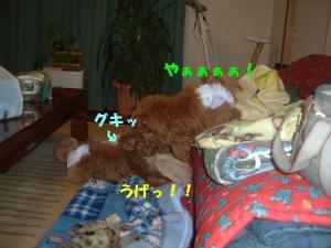 20060311094136.jpg