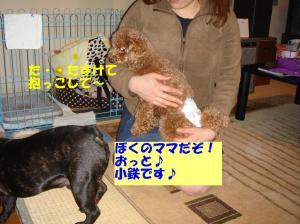 20060311095156.jpg
