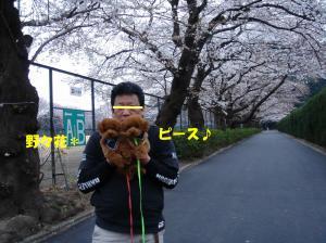 20060328193024.jpg