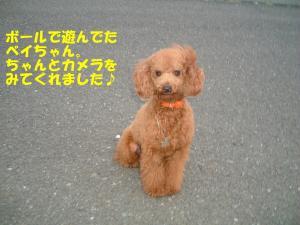20060328194611.jpg