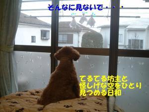 20060407183201.jpg
